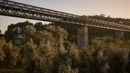 Ecopista Dão / Walking