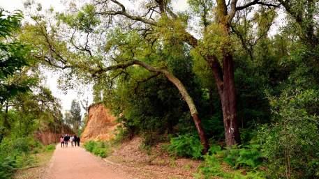 Ecopista do Tâmega / Walking