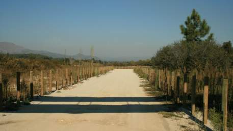 Ecovia do Rio Lima / Walking
