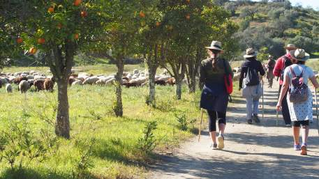 Rota do Guadiana / Walking