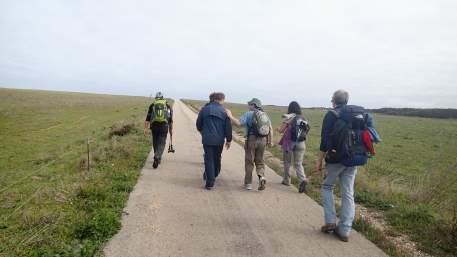 PR4 VBP - Percurso Pedestre Pelas Encostas da Raposeira