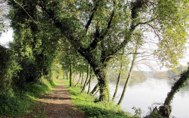 Porto e Norte / Walking