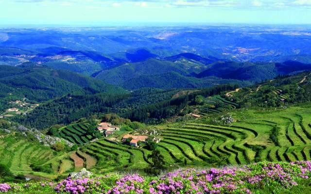 Monchique mountain range
