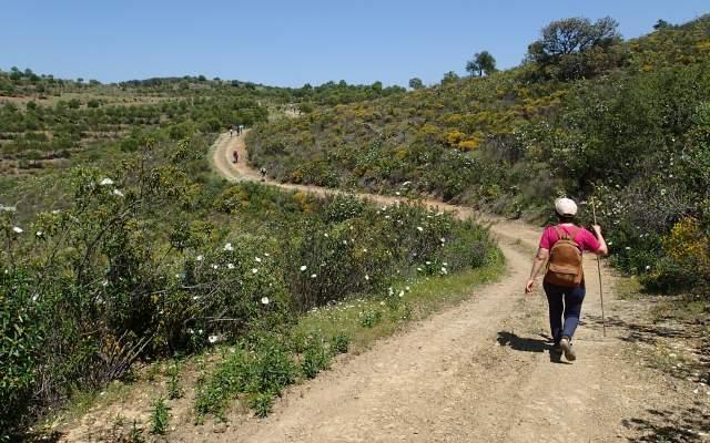 PR10 CTM - Percurso Pedestre Barrancos