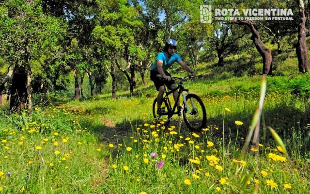 Rota Vicentina / Cycling